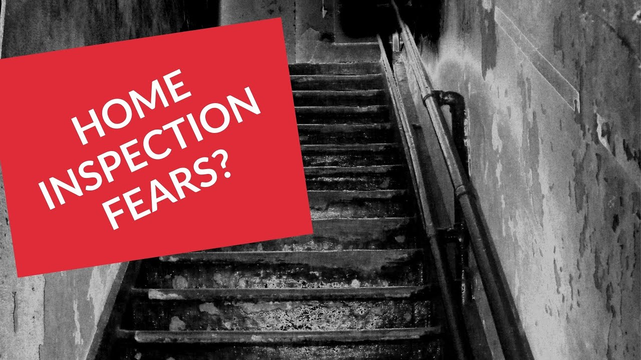 Home Inspection 411: Home Inspection Fears? Your Top Question Answered